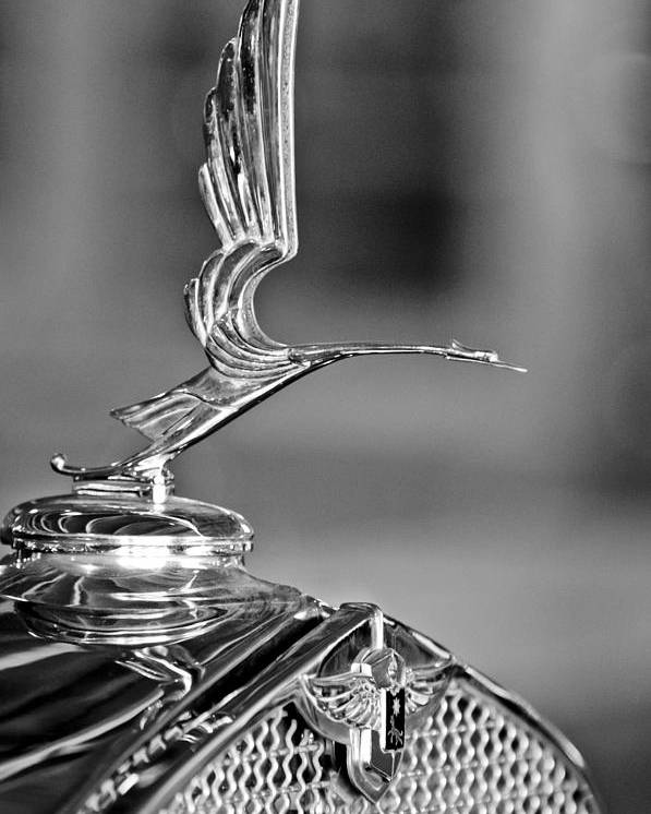 1931 Lasalle Hood Ornament Poster featuring the photograph 1931 Lasalle Hood Ornament by Jill Reger