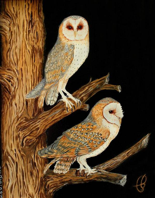 Owl Poster featuring the painting Barn Owl Duo by Doreen Stopczynski