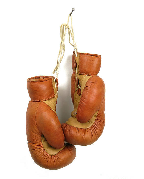 Studio Poster featuring the photograph Boxing Gloves by Bernard Jaubert