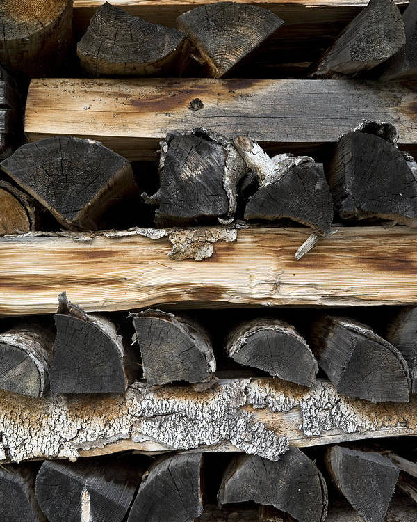 Firewood Poster featuring the photograph Firewood Stack by Frank Tschakert