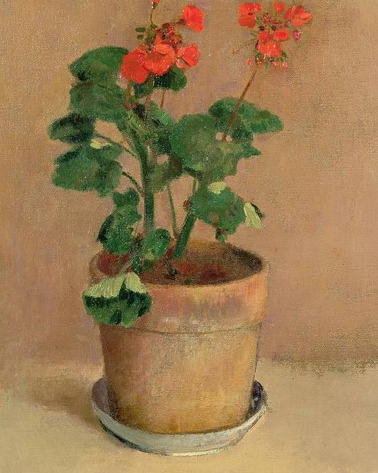 Plant; Geranium; Flowers Poster featuring the painting Geraniums In A Pot by Odilon Redon