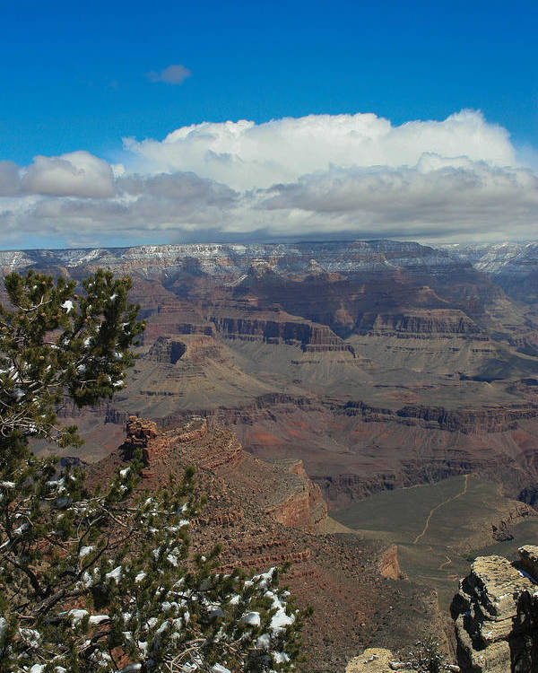 Grand Canyon Poster featuring the photograph Grand Canyon View by Natural Focal Point Photography