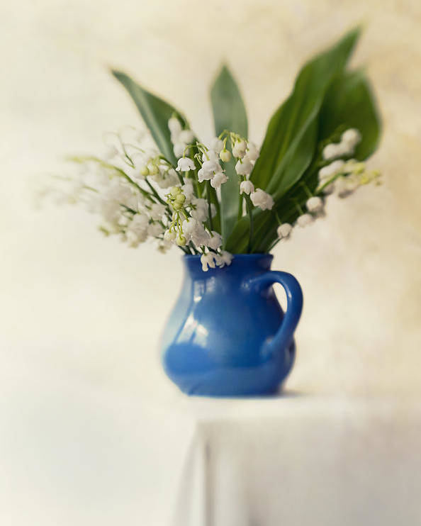 Flowers Poster featuring the photograph Lilly Of The Valley by Jaroslaw Blaminsky
