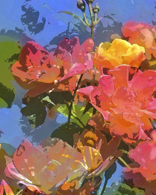 Floral Poster featuring the photograph Rose 208 by Pamela Cooper