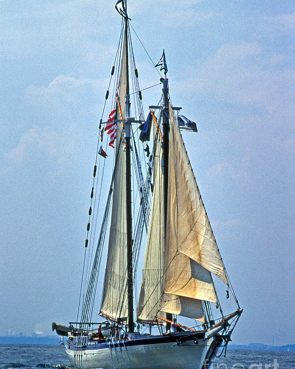 Sailing Gear Poster featuring the photograph Tall Ship Harvey Gamage by Skip Willits