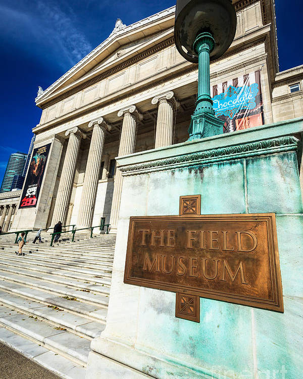 America Poster featuring the photograph The Field Museum Sign In Chicago by Paul Velgos