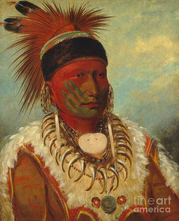 Mo; Hos; Ka; Tribe; Native American Indian; Feathered; Headdress; Feathers; Tattoo; Tattoos; Tribal Markings; Marking; Leader; Chieftain; Iowa; Male; Portrait; Bone Necklace; Tusks; Teeth; Animal Skin; Costume; Traditional; Dress Poster featuring the painting The White Cloud Head Chief of the Iowas by George Catlin
