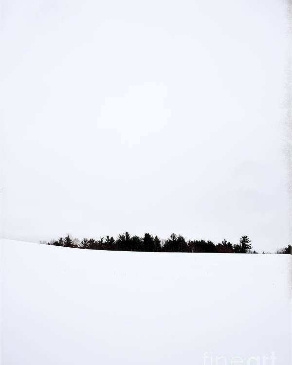 Winter Poster featuring the photograph Winter Minimalism by Edward Fielding