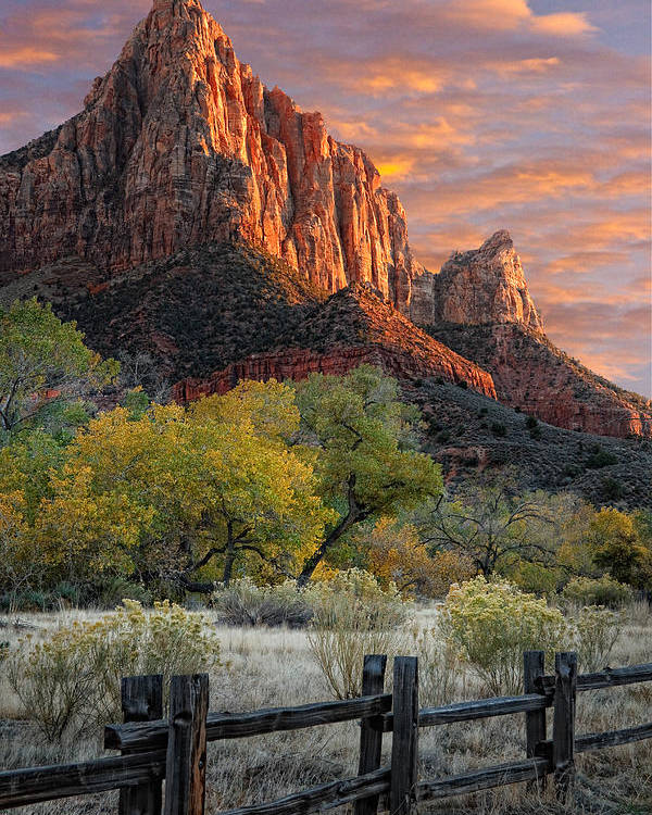 Zion National Park Poster featuring the photograph Zion National Park by Utah Images