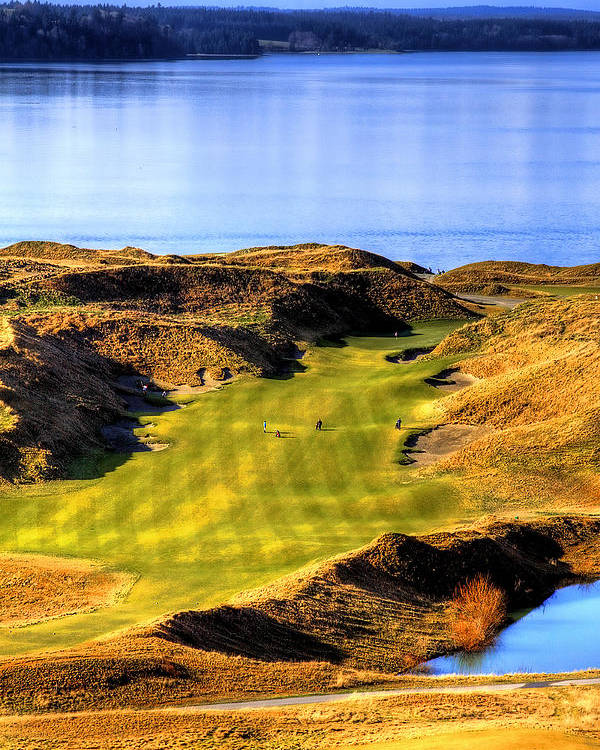 Chambers Bay Golf Course Poster featuring the photograph 10th Hole At Chambers Bay by David Patterson