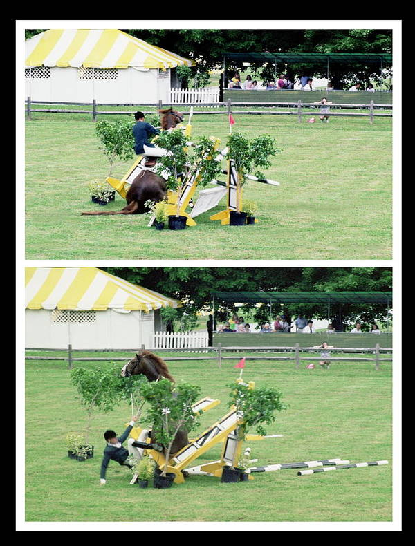 Horseshow Poster featuring the photograph 111708-3  Disaster by Mike Davis