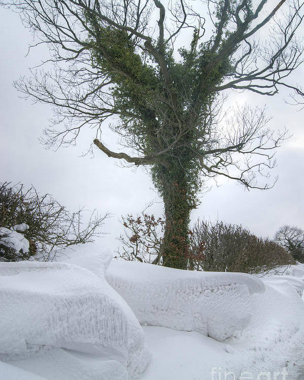 Snow Poster featuring the photograph Drift 18 by David Birchall