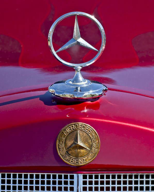 1953 Mercedes Benz Poster featuring the photograph 1953 Mercedes Benz Hood Ornament by Jill Reger