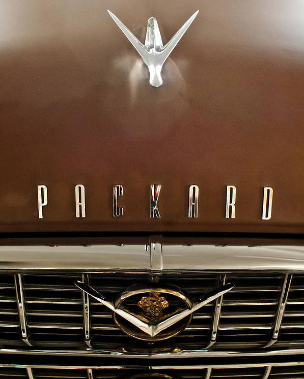 1955 Packard 400 Poster featuring the photograph 1955 Packard 400 Hood Ornament by Jill Reger