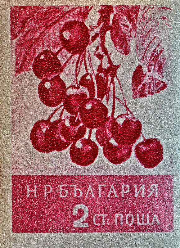 1956 Bulgarian Poster featuring the photograph 1956 Bulgarian Wild Cherry Stamp by Bill Owen