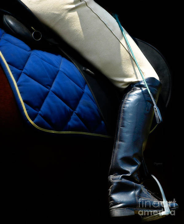 Dressage Poster featuring the photograph Crop And Boot by Steven Digman