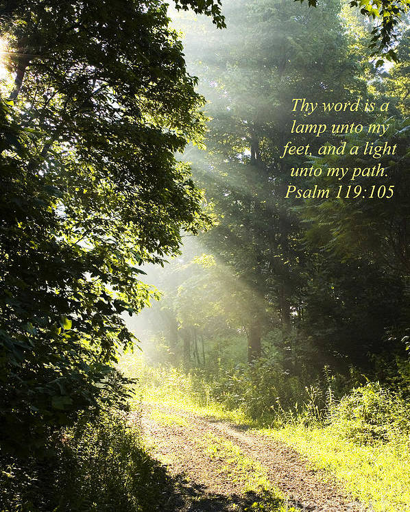 Morning Poster featuring the photograph Light Unto My Path by Thomas R Fletcher