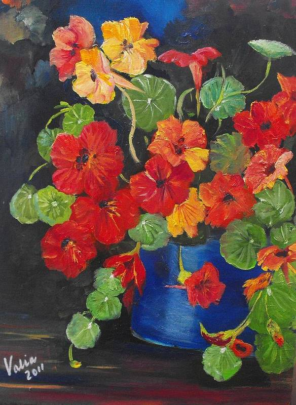 Nasturtiums Poster featuring the painting Night Nasties by Valerie Curtiss