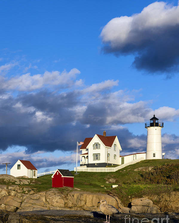 Cape Neddick Poster featuring the photograph Nubble Lighthouse by John Greim