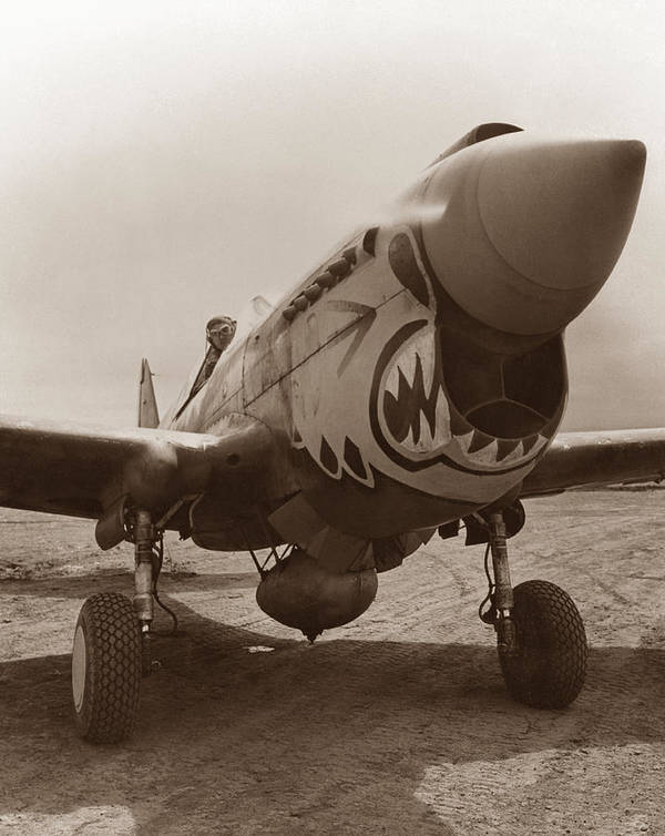 Ww2 Poster featuring the photograph P-40 Warhawk by War Is Hell Store