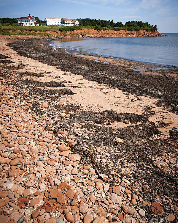 Prince Edward Island Poster featuring the photograph Prince Edward Island Coastline by Elena Elisseeva