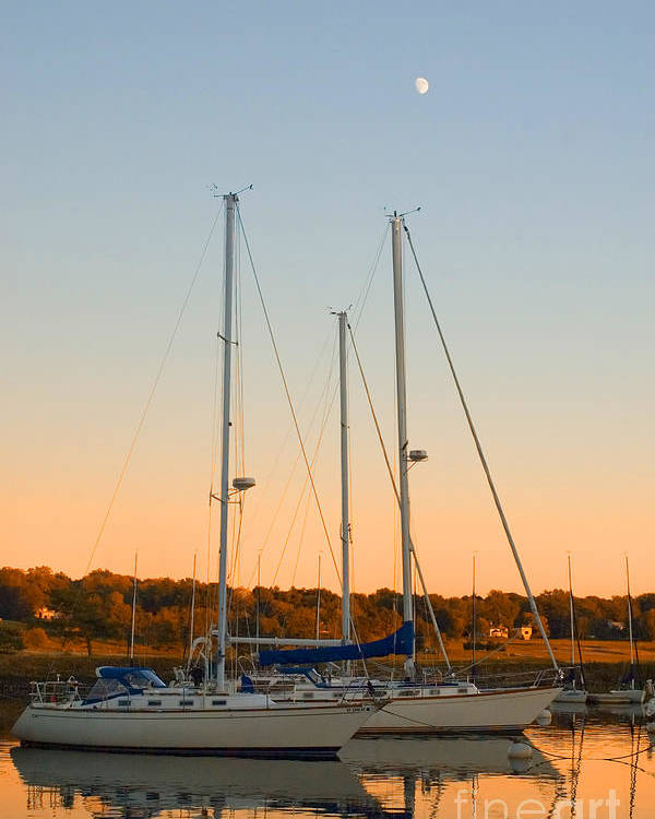 Sailboat Poster featuring the photograph Sunday Afternoon by Joann Vitali