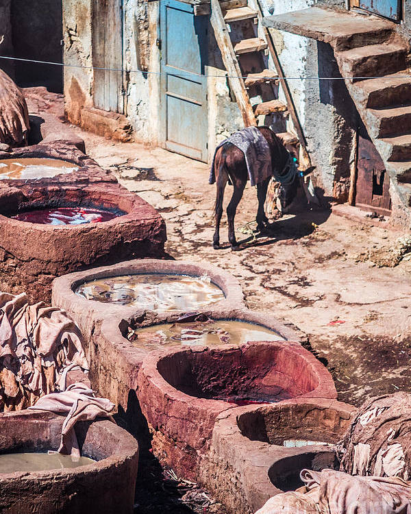 Tanners Photographs Poster featuring the photograph Tannery In Fes by Sabino Parente