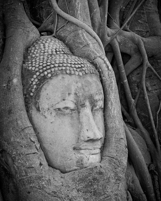 Ancient Poster featuring the sculpture The Ancient City Of Ayutthaya by Thosaporn Wintachai
