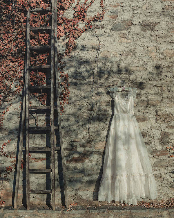 Dress Poster featuring the photograph Wedding Dress by Joana Kruse