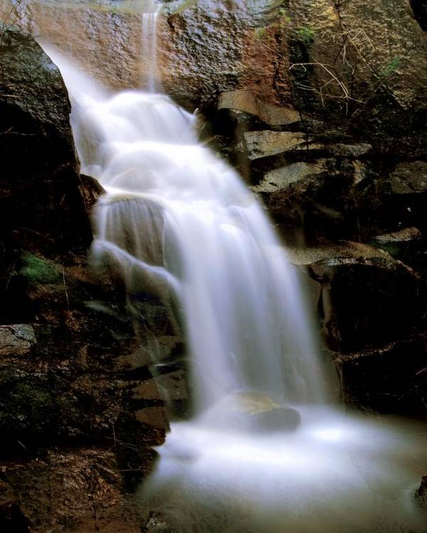 Waterfall Poster featuring the photograph Wildcat Falls by Bill Gallagher