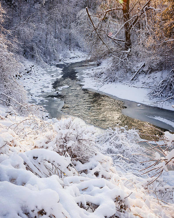 Winter Poster featuring the photograph Forest Creek After Winter Storm by Elena Elisseeva