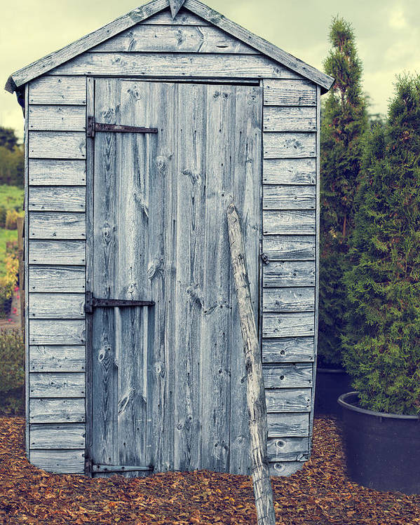 Garden Poster featuring the photograph Garden Shed by Amanda Elwell