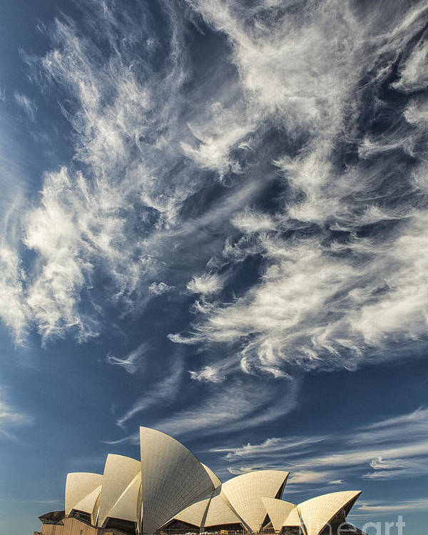 Sydney Opera House Poster featuring the photograph Sydney Opera House by Sheila Smart Fine Art Photography
