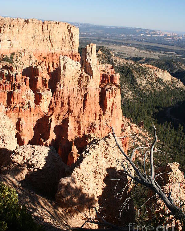 Canyon Poster featuring the photograph Bryce Canyon by Christiane Schulze Art And Photography