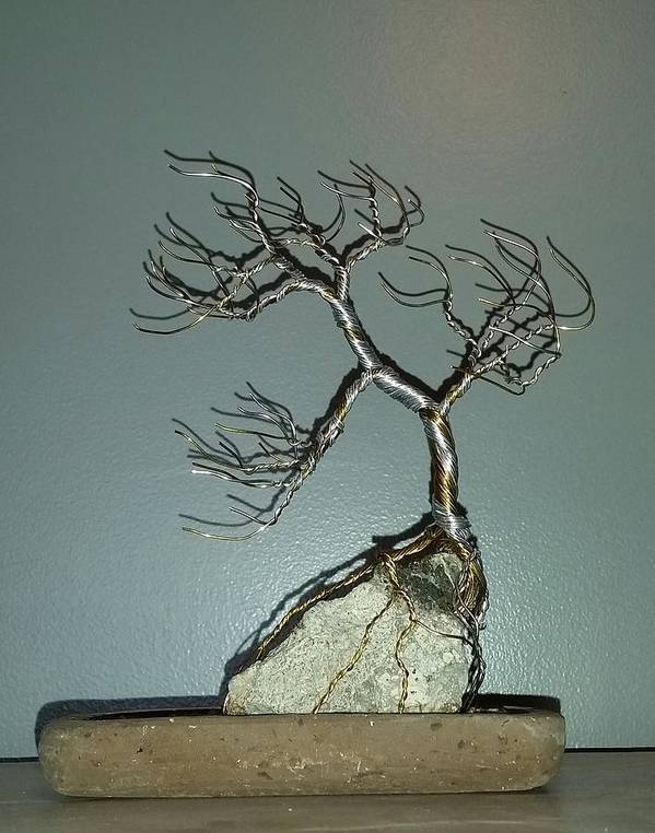 Bonsai Tree Poster featuring the photograph #63 Windswept Bonsai Tree root over rock by Ricks Tree Art