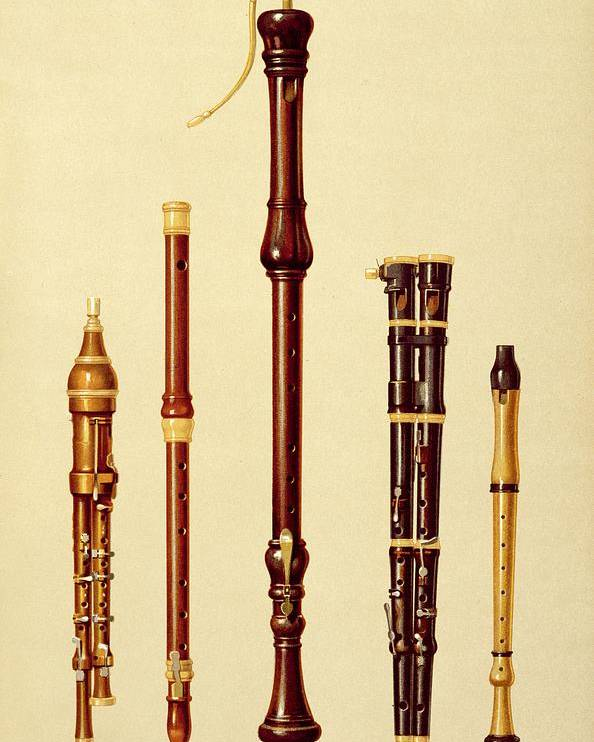 Woodwind Poster featuring the drawing A Double Flageolet, A German Flute by Alfred James Hipkins
