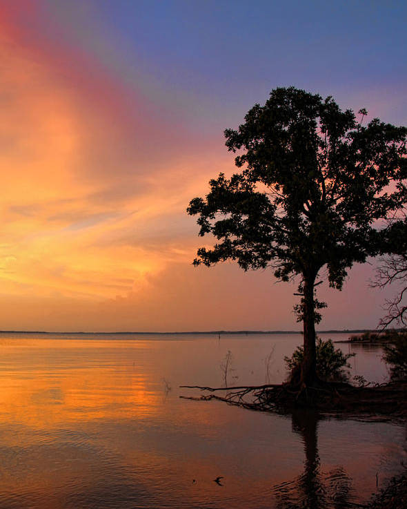 Sunset Poster featuring the photograph A Most Colorful Scene by Carolyn Fletcher