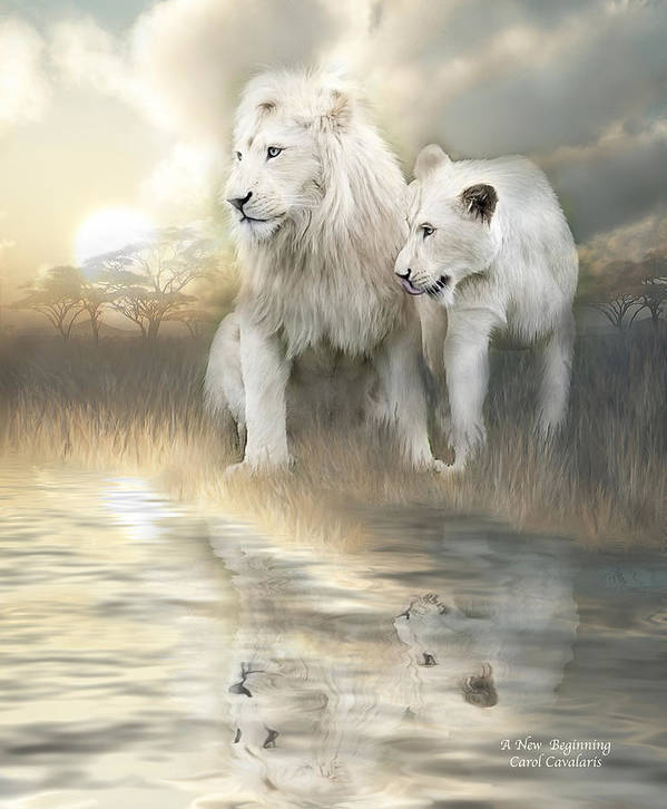 Lion Poster featuring the mixed media A New Beginning by Carol Cavalaris