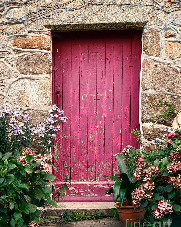 France Poster featuring the photograph A Pink Door by Olivier Le Queinec