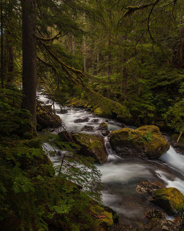 Northwest Poster featuring the photograph A River Passes Through by Mike Reid