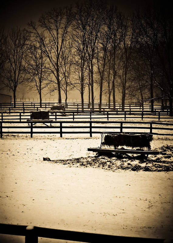 Snow Poster featuring the photograph A Snow Covered Horse Farm by Sarah Cafaro