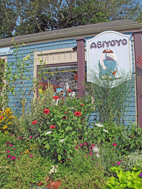 Toy Store Poster featuring the photograph Abiyoyo by Barbara McDevitt