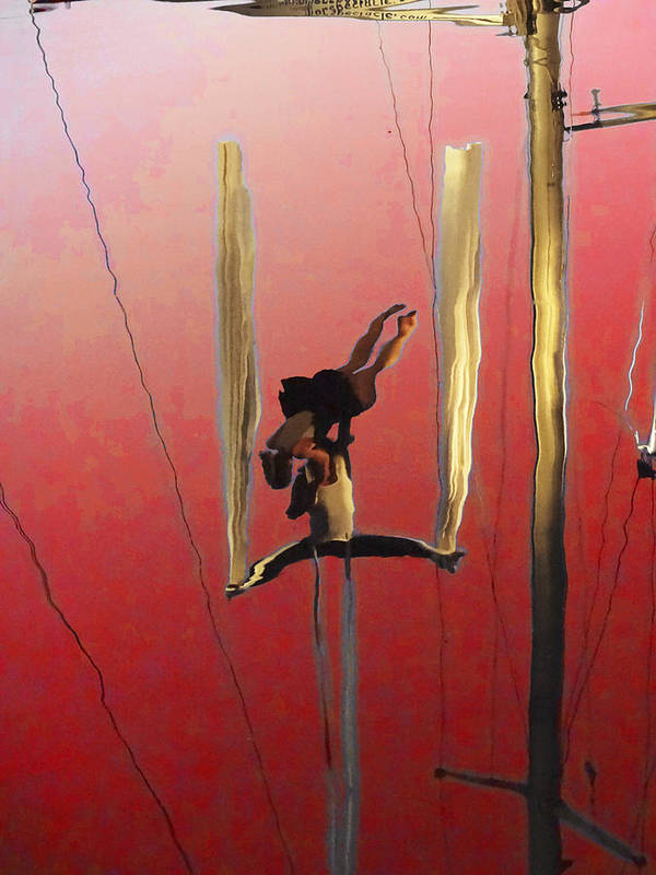Anne Mott Poster featuring the photograph Acrobatic Aerial Artistry1 by Anne Mott