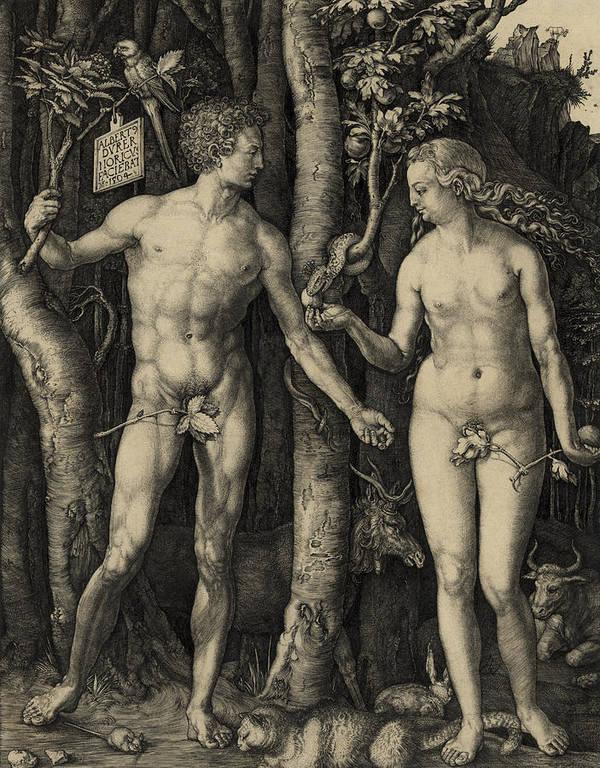 Durer Poster featuring the photograph Adam And Eve In The Garden Of Eden - Albrecht Durer 1504 by Daniel Hagerman