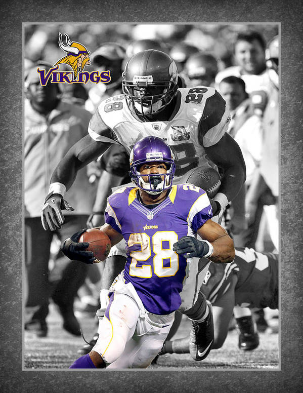 Adrian Peterson Poster featuring the photograph Adrian Peterson Vikings by Joe Hamilton