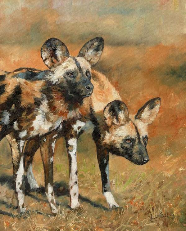 Wild Dogs Poster featuring the painting African Wild Dogs by David Stribbling