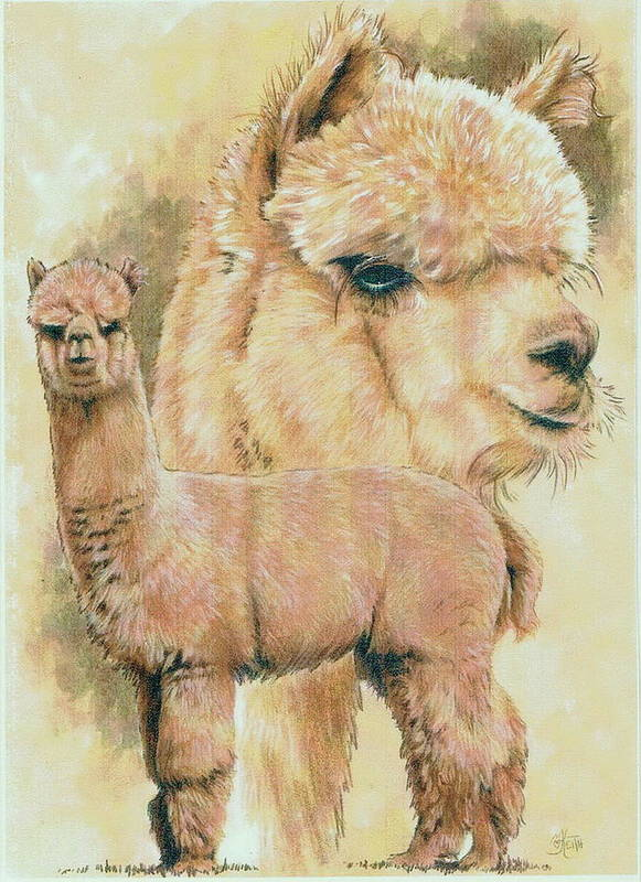 Alpaca Poster featuring the mixed media Alpaca by Barbara Keith