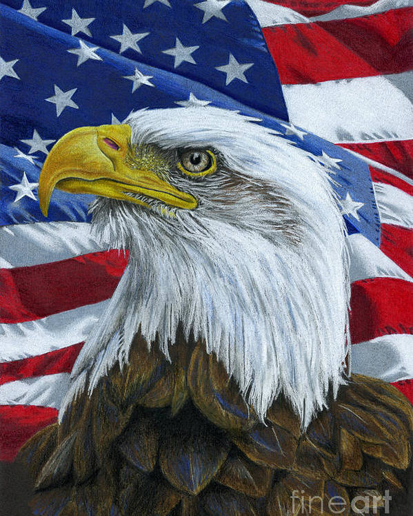 American Eagle Day in 2021/2022 - When, Where, Why, How is