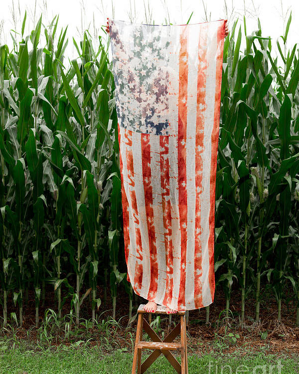 American Flag Poster featuring the photograph American Flag And A Field Of Corn by Kim Fearheiley