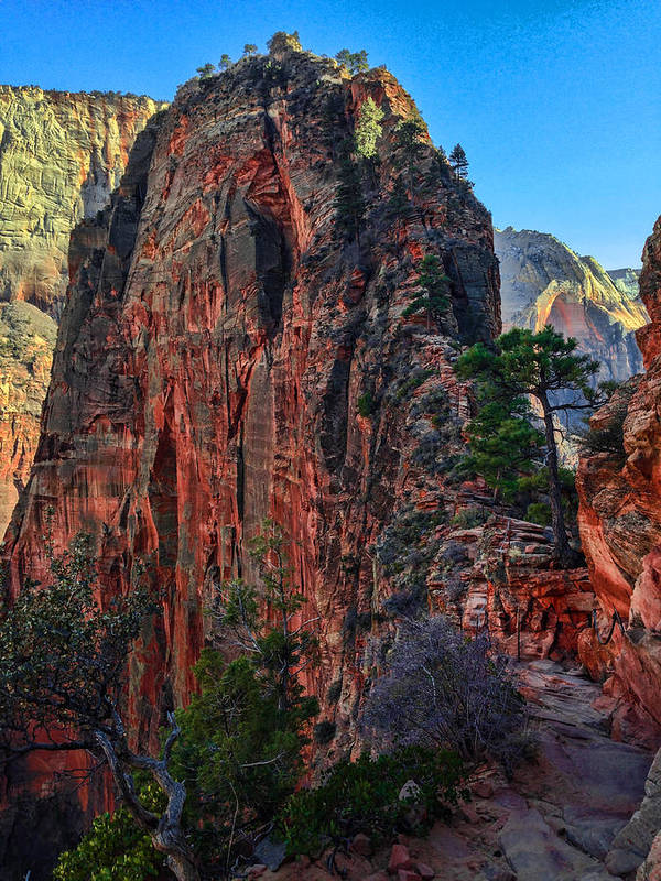 Zion Poster featuring the photograph Angel's Landing by Chad Dutson